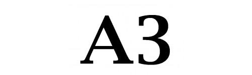 Formato A3
