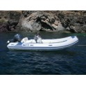 (Rental) Boats with motors 40 hp