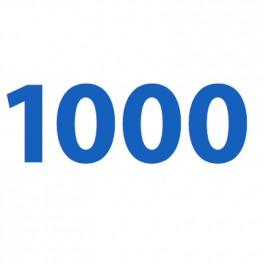 Service  - Security Deposit for Car (1.000)